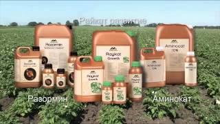 Система минерального питания для картофеля