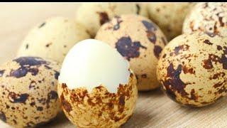 Перепелиные яйца. Как варить яйца. Яйца в смятку.