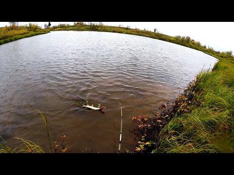 как выбрать место для рыбалки на спиннинг