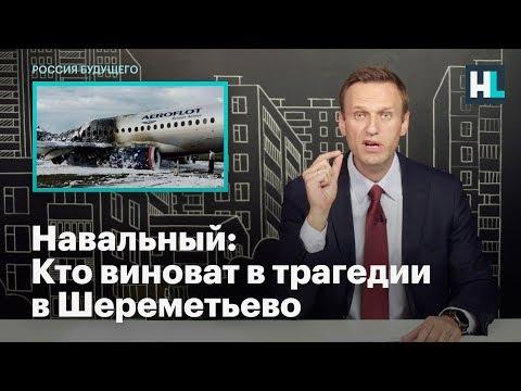 Навальный: Кто виноват