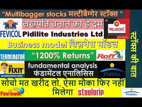 Pidilite Industries Share L Pidilite Industries Share Analysis L Multibagger Stocks 2020 L Top 10 Youtube