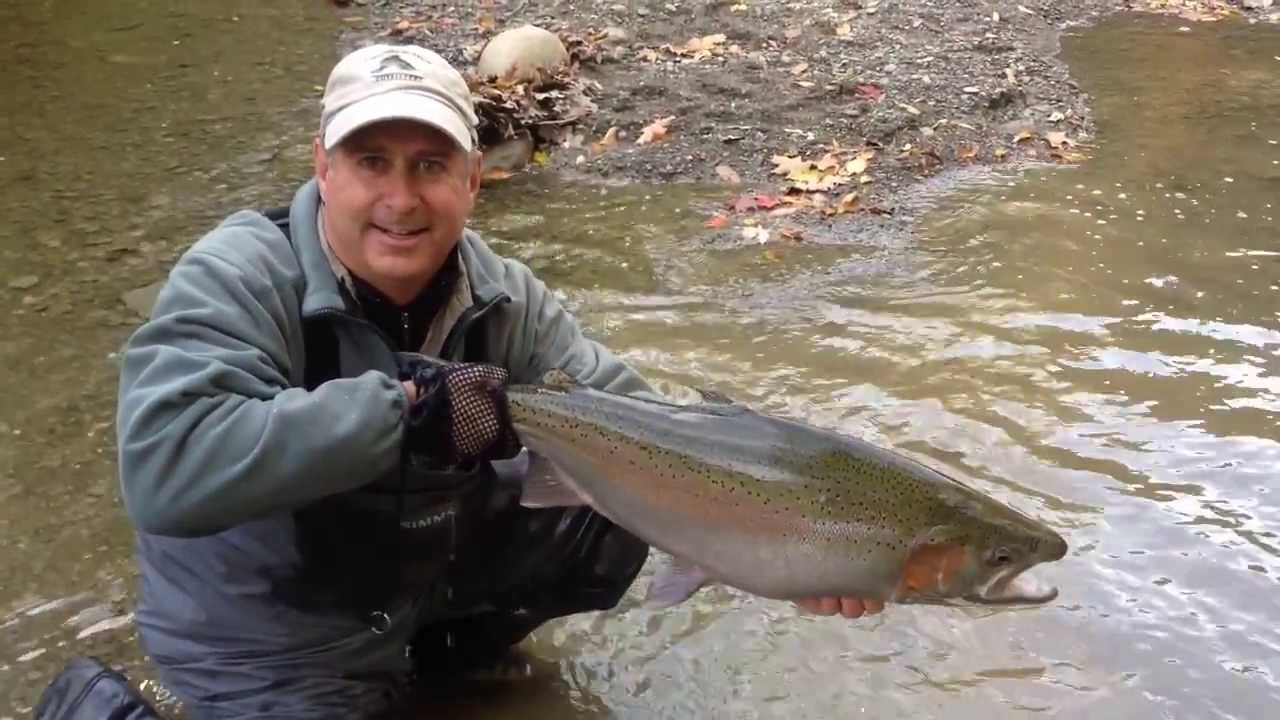 Cco fly fishing steelhead adventures youtube for Cattaraugus creek fishing report