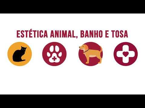 Formación Universitaria.Auxiliar de Clínica Veterinaria de YouTube · Duração:  3 minutos 46 segundos