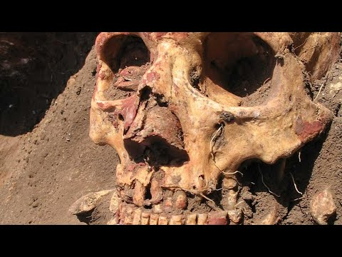 DNA Results Of Ancient Native American Mummies - ROBERT SEPEHR