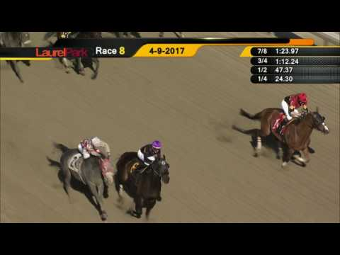 LAUREL PARK 4 9 2017 RACE 8