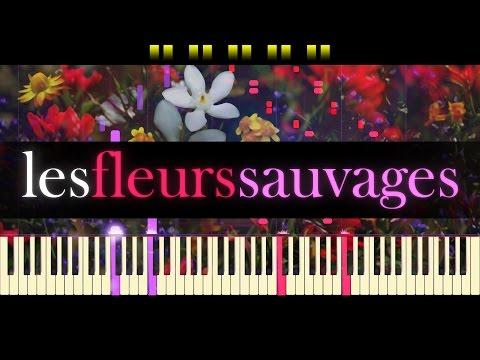 Les Fleurs Sauvages // RICHARD CLAYDERMAN