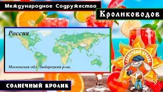 Кролики Московской обл. Люберецкий р-он.