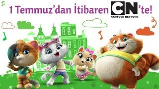 44 Kedi | Çok yakında Cartoon Network'te başlıyor!