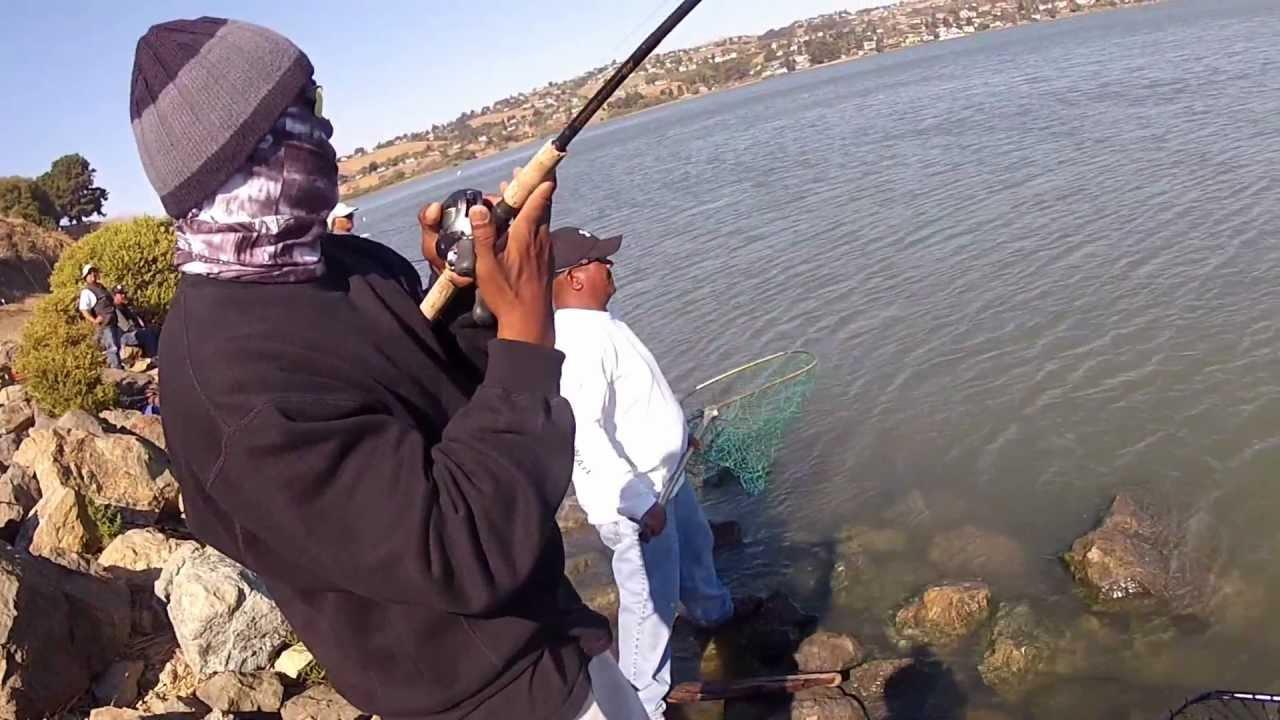2012 9 17 rex lands a benicia salmon youtube for Benicia fishing report