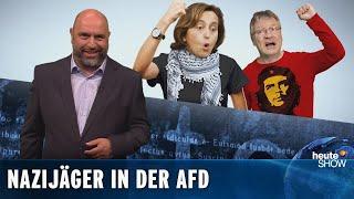 Kalbitz-Rauswurf: Entnazifiziert die AfD sich jetzt selbst?