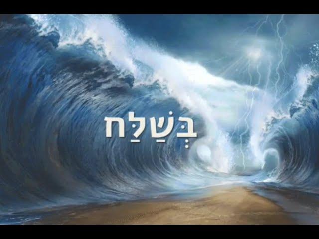 Недельная глава Бешалах с  Рав Меир Ильягуев/Weekly Torah Portion with Rav Meir Ilyaguev - Beshalach