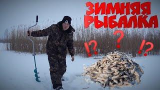 Такой рыбалки мы не ожидали Зимняя рыбалка