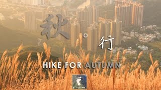 hike for autumn 秋 行