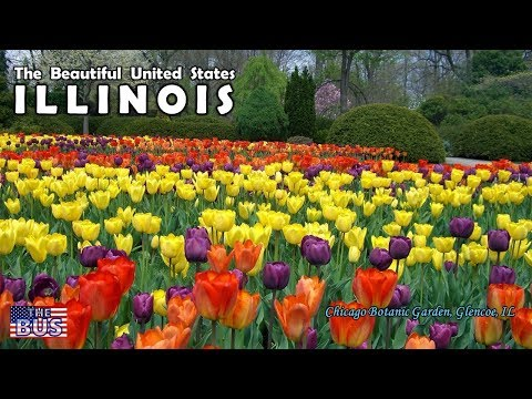 USA ILLINOIS State Symbols/Beautiful Places/Song ILLINOIS w/lyrics