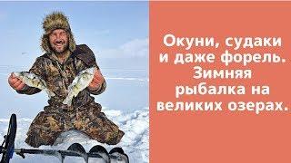 Окуни, судаки  и даже форель. Зимняя  рыбалка на великих озерах.