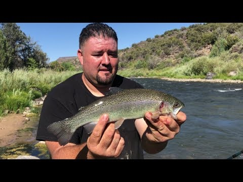 Fishing The Rio Grande River At Taos