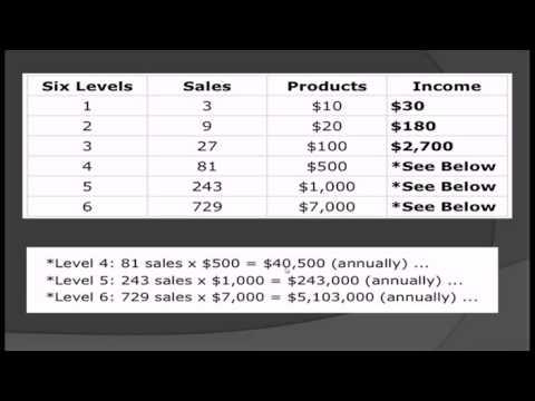 Next Level x Crowd Funding Review Monique