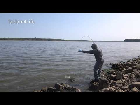 Summer Fishing For Striped Bass, White Bass, Channel Catfish And Crappies Ep.5 (Adventure#19)