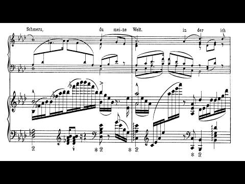 Widmung No1 SchumannLiszt  Sheet Music