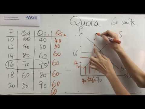 HKDSE Economics Government intervention - Quota (配額) Part 1