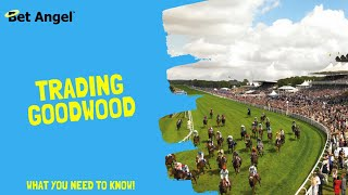 Betting tips and Betfair trading - 'Glorious' Goodwood 2019