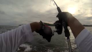 Guam Fishing - shark bait 12.2.12 fishing trip