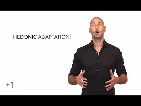 +1 #150: Hedonic Adaptation