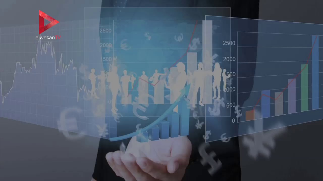 الوطن المصرية:معلومات عن مراكز خدمات المستثمرين التي افتتحها السيسي