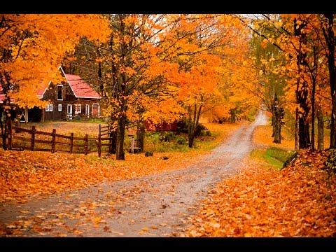 Top 10 Biggest Cities In Vermont