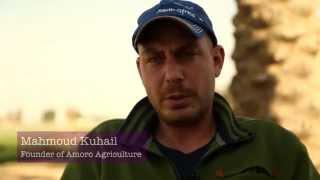 Economic independence grows at Palestinian mushroom farm