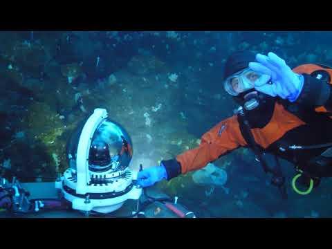 MOO Antarctica - Introducing the Underwater Observatory