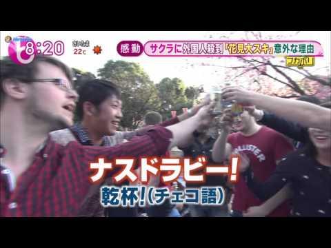 MFB on Asahi TV 30March2015
