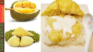 How to make durian dessert with Sticky rice ( បាយដំណេើបធូរ៉េន )
