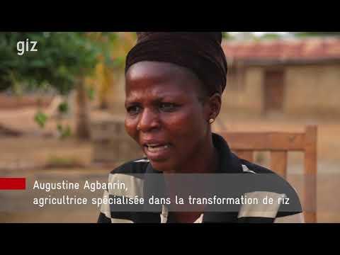 GIZ : De la culture des champs à la petite exploitation Centres d'Innovations Vertes au Bénin. 2017