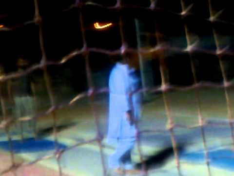 al qasab baladiya's volley ball ground.near riyadh.shahad isuzu.mukesh gujar with, hot comedy,play v