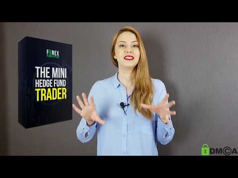 The Mini Hedge Fund Trader Review – Does This Automated Trading Software For MT4 Work?