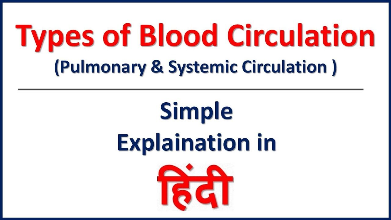 Types of Blood Circulation | Pulmonary and Systemic Circulation in Hindi |  Bhushan Science