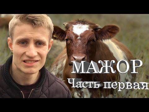 ВЫБЕРИТЕ РЕГИОН -