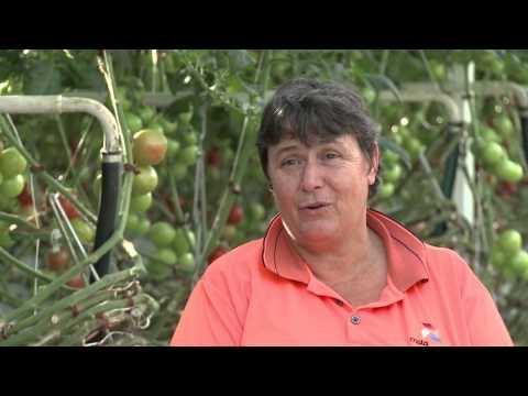 Seasonal Worker Program 2012: Benefits