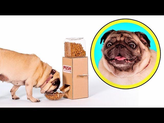 Un dispensador de comida para la nueva mascota de Sam