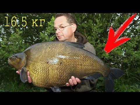 Самый большой в мире пойманный Лещ!!! Рыба Лещ весом 16.5кг. Мировой рекорд! Гигант, Трофей!