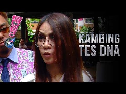 Tak Terima Pernyataan Ferry Juan, Hal Nekat Ini Dilakukan Putri Stagi - Cumicam 30 November 2017