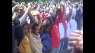 Download Seyfalislam, Naaf Himaa Yabootii Mp3
