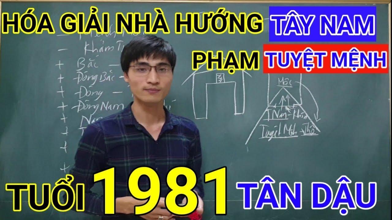 Tuổi Tân Dậu 1981 Nhà Hướng Tây Nam | Hóa Giải Hướng Nhà Phạm Tuyệt Mệnh Cho Tuoi Tan Dau 1981