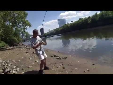 Multi-Species Fishing on the Tidal Schuylkill River (Philadelphia, PA)