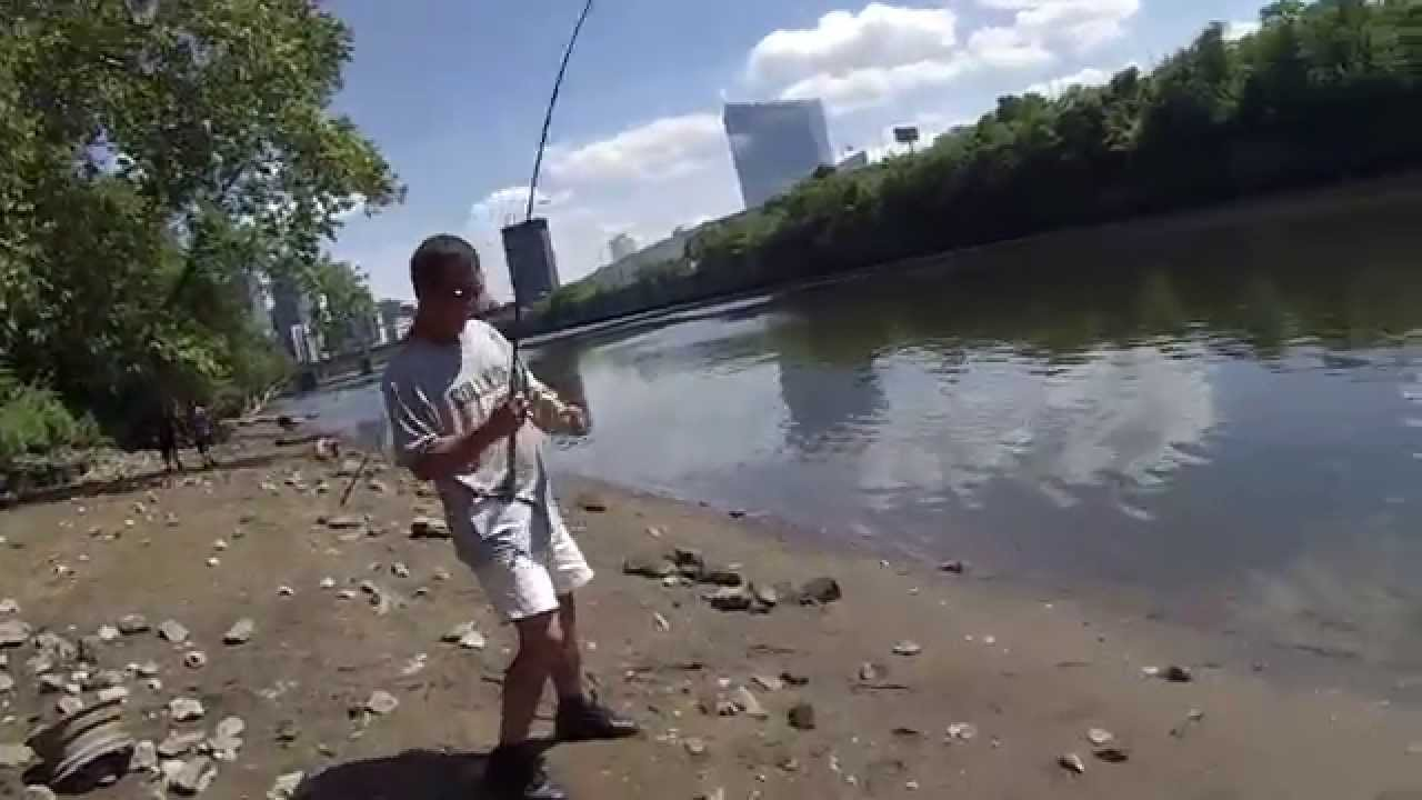 Multi species fishing on the tidal schuylkill river for Extreme philly fishing