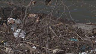 Debris Piling Up On Sacramento River