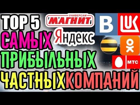 TOP 5 САМЫХ ПРИБЫЛЬНЫХ ЧАСТНЫХ КОМПАНИЙ В РОССИИ