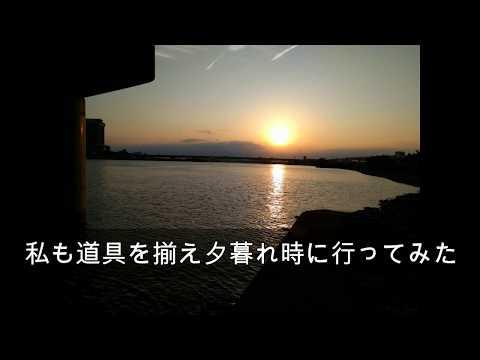【ChigyoFishing】荒川千住新橋周辺での釣り