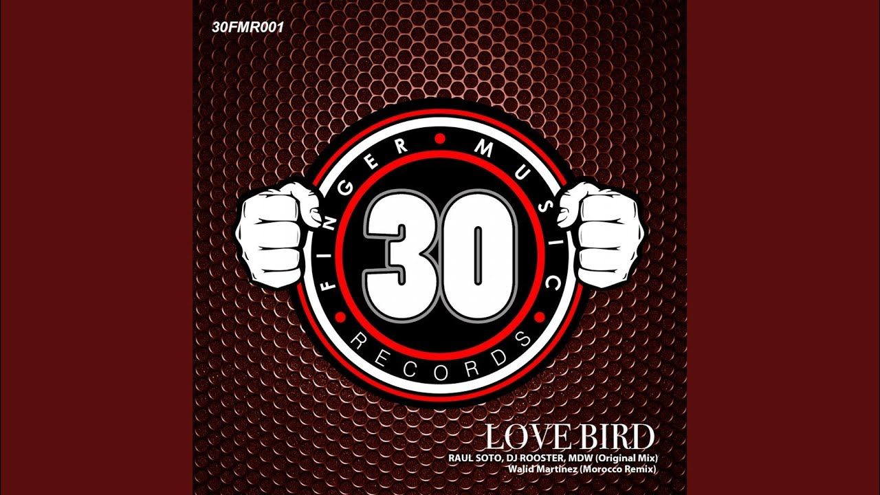 Download Love Bird (Original Mix)